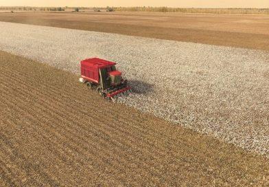 Case IH machinery destined for Uzbek cotton fields